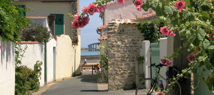 apartment in Ile de Re